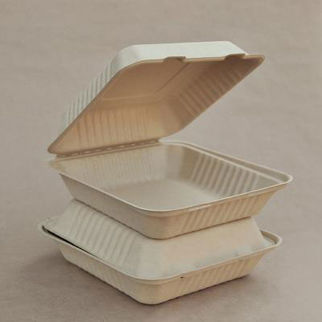 Picture of Bamboo Clamshell Packaging 9inch 200