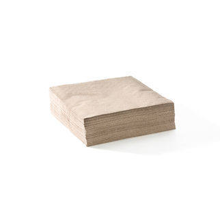 Picture of Dinner BioNapkin 2 ply 1/4 fold corner embossed Natural 1000pc