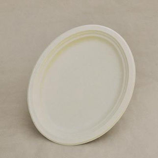 Picture of Large Oval Plate 251mm 500
