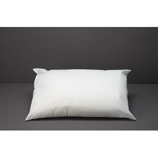 Picture of Pillow Polyester Fill 700gm 46x73cm